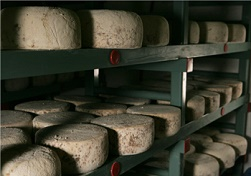 northumberland-cheese-company
